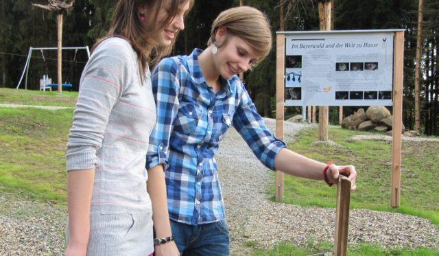 Kinder studieren eine Lehrtafel am Fledermaus-Lehrpfad
