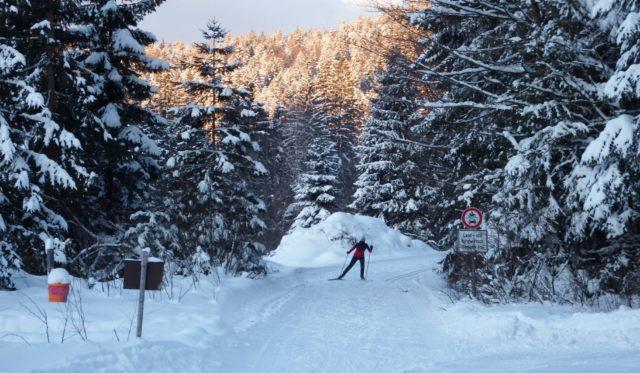 Ein Skifahrer