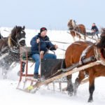 Pferdeschlittenrennen 2015