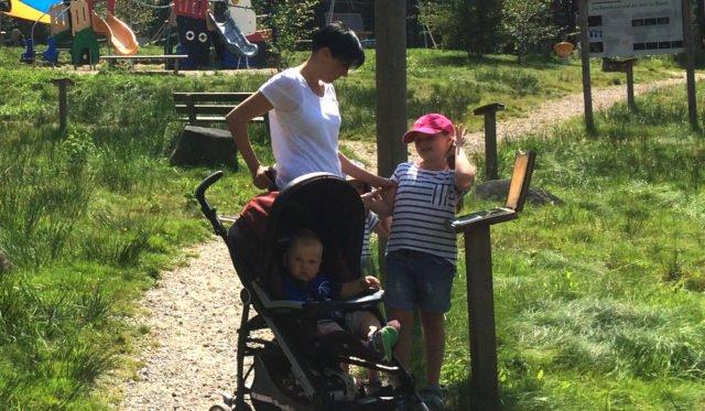 wandernde Familie mit Kinderwagen