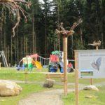 große Fledermaus-Infotafel
