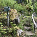 Aufstieg zur Aussichtsplattform (verschieden Wanderwege)